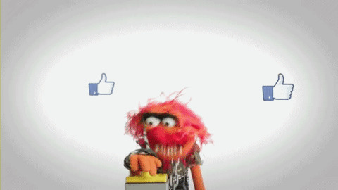 Social Media Muppets GIF - Find & Share on GIPHY