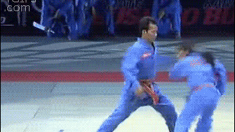 Martial Arts Fighting GIF - Find & Share on GIPHY