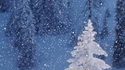 Snow On Christmas.Christmas Tree Snow Gif Find Share On Giphy