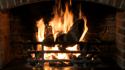 Fireplace GIF - Find & Share on GIPHY